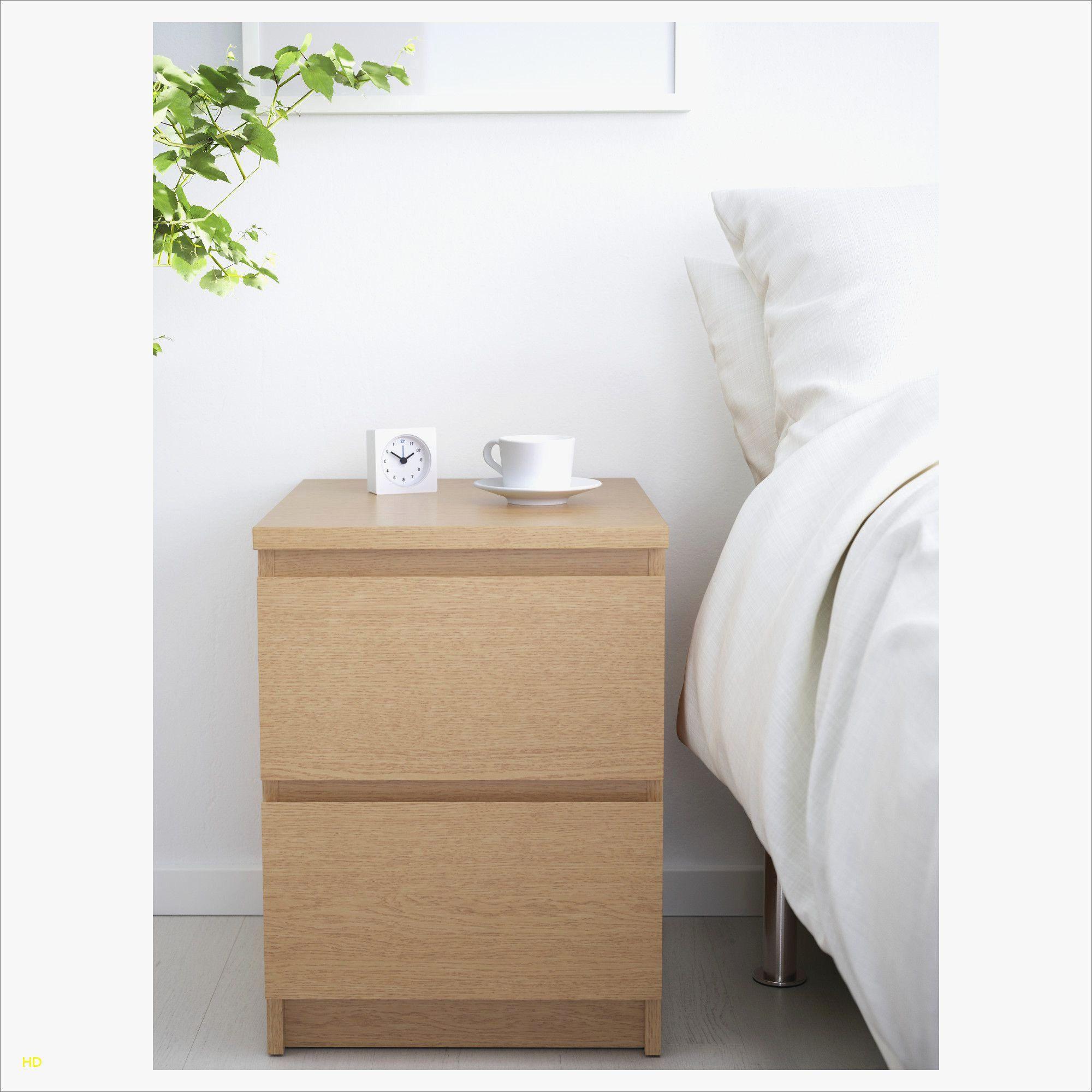 Banc De Lit Coffre Luxe Banc Coffre Ikea Beau Les 24 Luxe Coffre De Rangement Interieur Ikea
