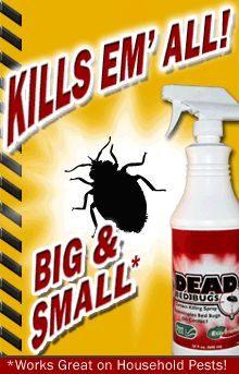 Bombe Anti Punaise De Lit Douce 100 Best Bed Bug Bites Images