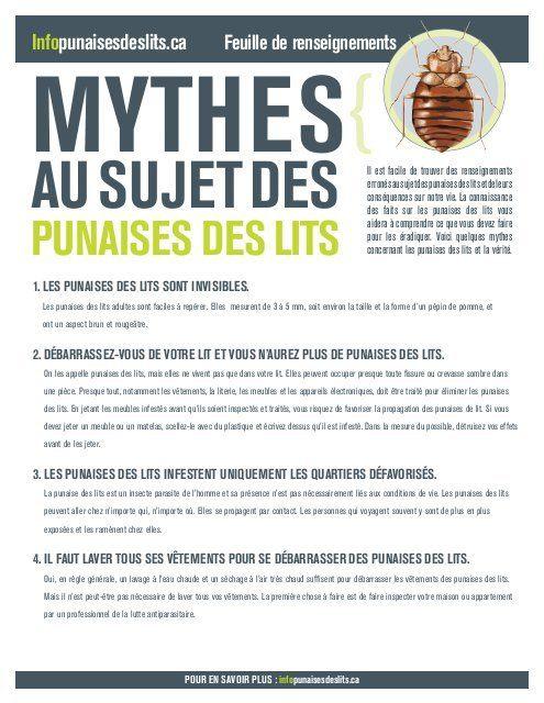 Comment Savoir Si On A Des Punaises De Lit Frais Punaises Des Lits Bed Bugs