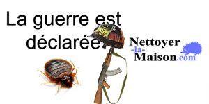 Comment Se Débarrasser De Punaise De Lit Nouveau Bug Shop Page 178 Sur 182