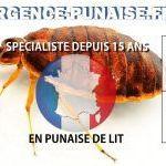 Comment Se Débarrasser Punaise De Lit Impressionnant Bug Shop Page 178 Sur 182