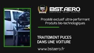 Comment Trouver Le Nid Des Punaises De Lit Douce Contrats Protection Anti Insectes Bst Aero