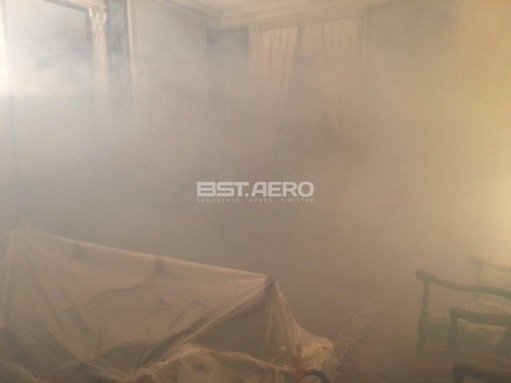 Comment Trouver Le Nid Des Punaises De Lit Génial Contrats Protection Anti Insectes Bst Aero