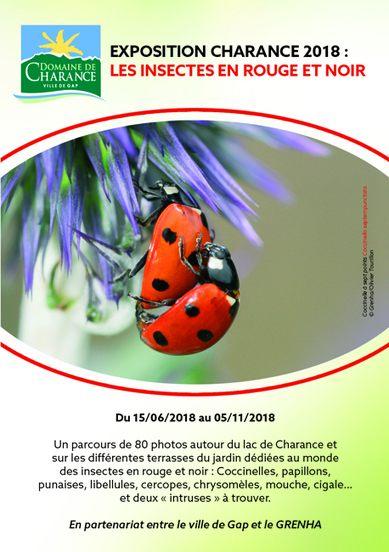 Comment Trouver Le Nid Des Punaises De Lit Impressionnant Juillet Ao T 2018 In Variétés Entomologiques