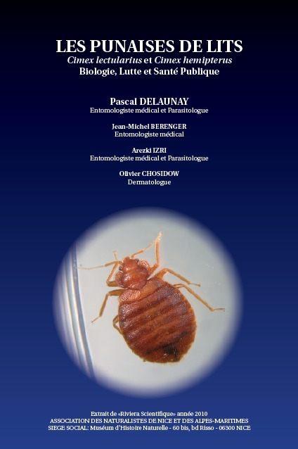 Comment Trouver Le Nid Des Punaises De Lit Meilleur De Pdf In Insect Archive