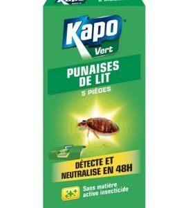 Comment Tuer Des Punaises De Lit Douce Spray Anti Punaises De Lit Insecticide Punaise De Lit