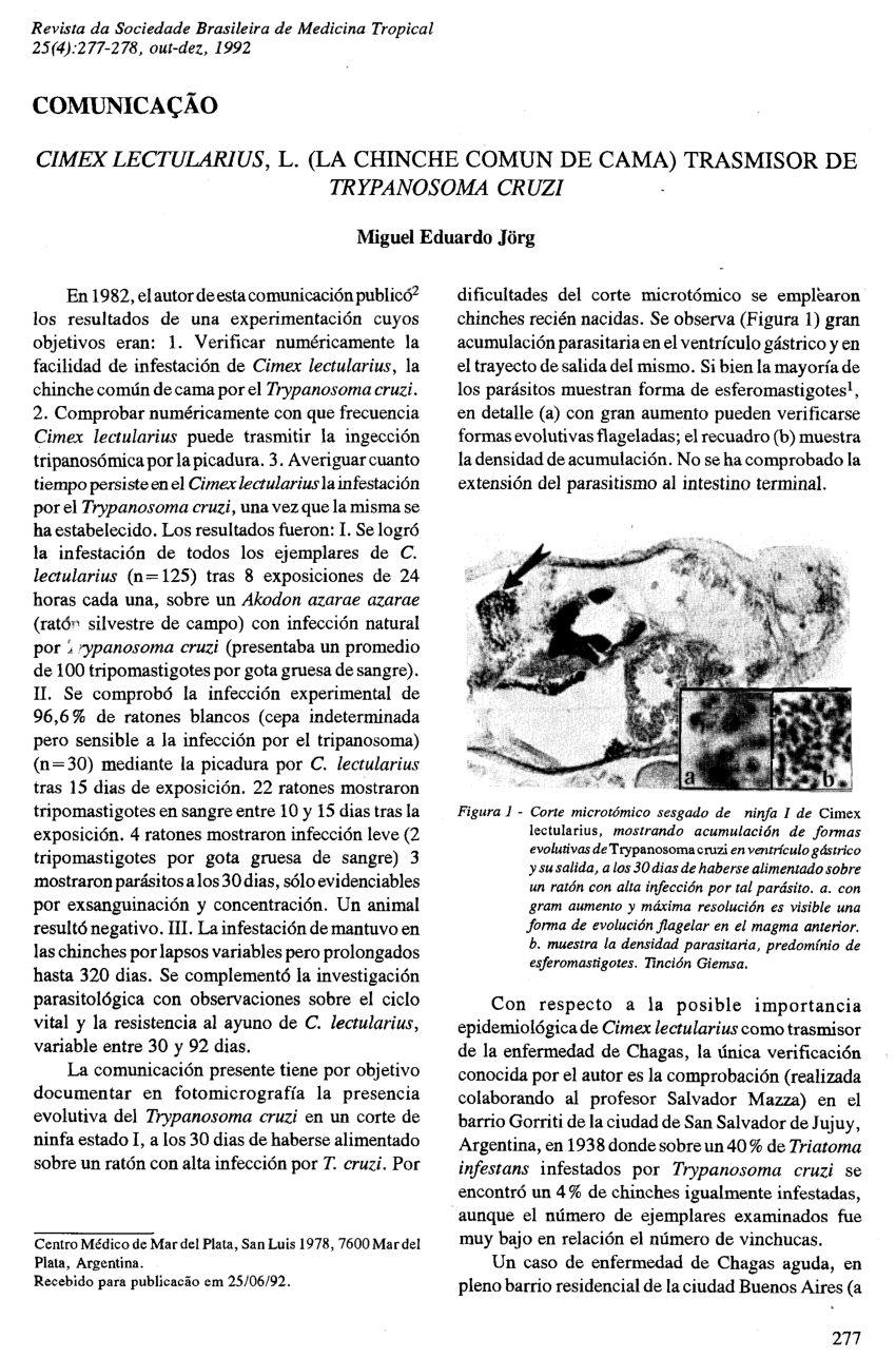 Dejection Punaise De Lit Agréable Pdf Bed Bugs Cimex Lectularius as Vectors Of Trypanosoma Cruzi