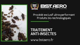 Dejection Punaise De Lit Frais Contrats Protection Anti Insectes Bst Aero