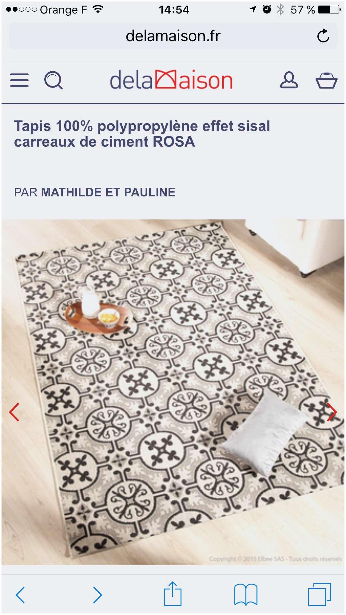 Nouveau Tapis Salle De Bain Design Utile 20 Génial Tapis Salle De
