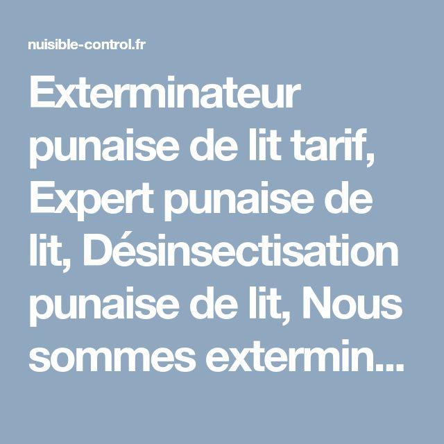 Desinfection Punaise De Lit Prix Élégant Exterminateur Punaise De Lit Tarif Expert Punaise De Lit