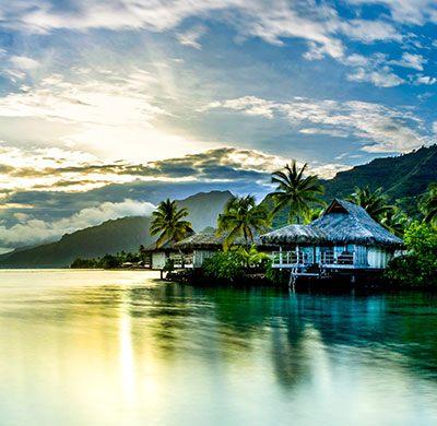 Desinfection Punaise De Lit Prix Frais Tahiti tourisme Visit Tahiti Bora Bora Moorea & More
