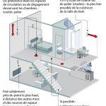 Detecteur Punaise De Lit De Luxe Infos Pratiques