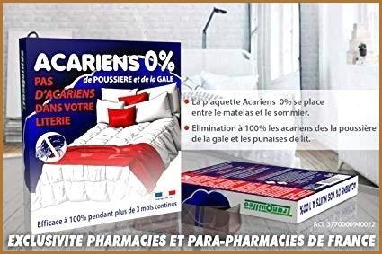 Entreprise Punaise De Lit Beau Anti Punaise De Lit Efficace Zochrim