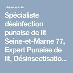 Exterminateur Punaise De Lit Paris Magnifique Les 87 Meilleures Images Du Tableau Désinsectisation Sur Pinterest