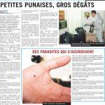 Exterminateur Punaise De Lit Tarif Agréable Médiamatinquébec] Les Punaises De Lit Font Des Ravages € Québec
