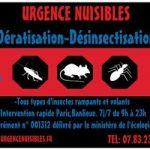 Exterminateur Punaise De Lit Tarif Joli Urgence Nuisibles 15 S Exterminateurs 10 Rue De