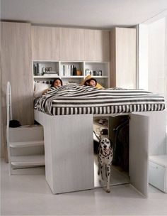 36 meilleures images du tableau bed for dogs