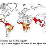 Fumigène Anti Punaise De Lit Belle Sante [archives] Maghreb Sat