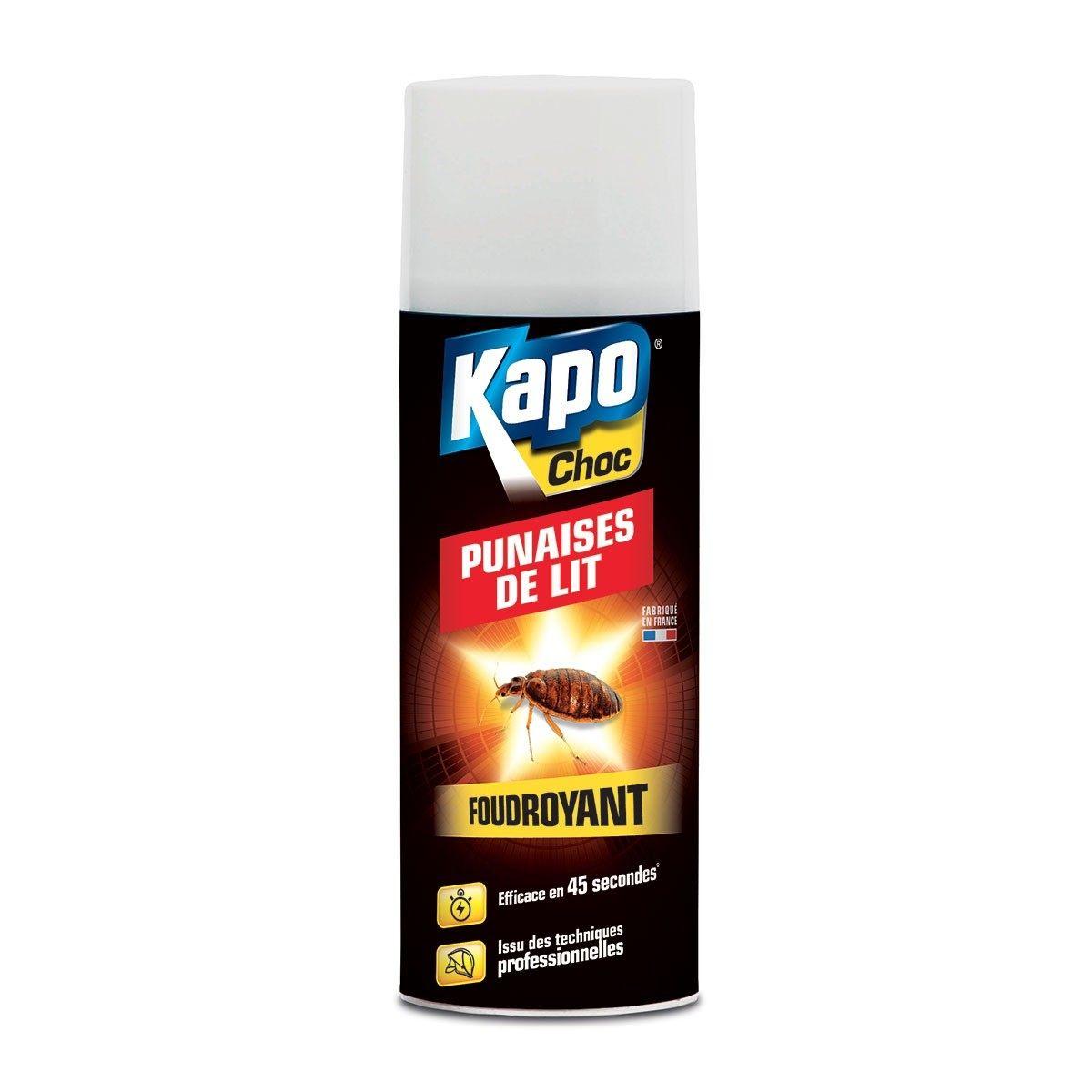 Insecticide foudroyant aérosol anti punaises de lit KAPO Modern