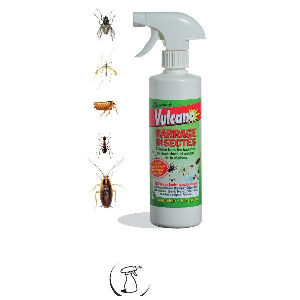 Insecticide Punaise De Lit Carrefour Magnifique Insecticide Punaise De Lit Carrefour Simple Bande Englue Pour