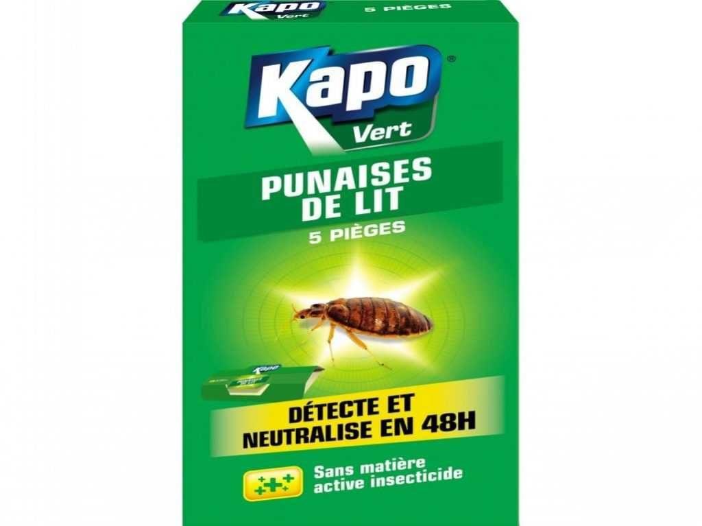 Insecticide Punaise De Lit Pharmacie Bel Repulsif Puce De Lit Housse De sommier Anti Punaise Mattress Safe