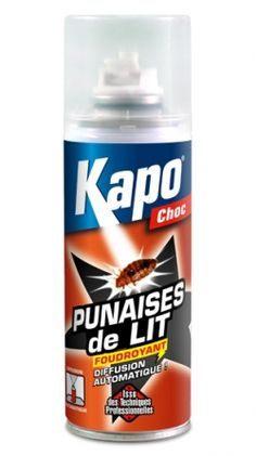 Kapo Choc Punaise De Lit Belle 23 Meilleures Images Du Tableau Insecte Rampant