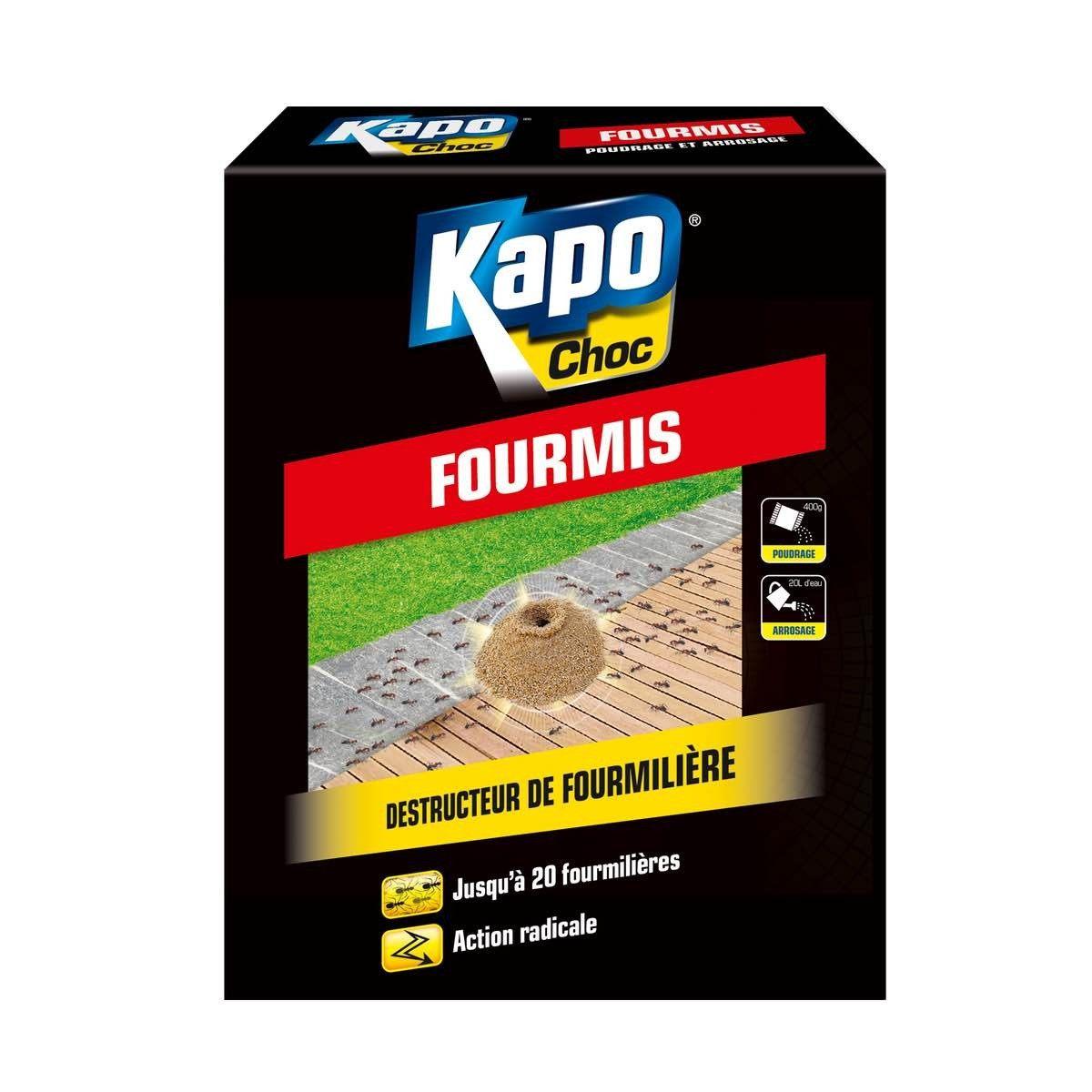Kapo Choc Punaise De Lit Magnifique Fumigene Anti Puce Leroy Merlin Interesting Frais Rideau Collection