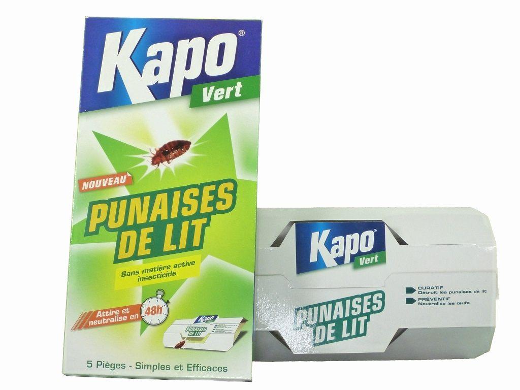 Kapo Punaise De Lit Magnifique Traitement Contre Les Punaises De Lit 26 Graphier Symptome Punaise