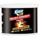 Kapo Punaise De Lit Meilleur De Fumig Ne Insecticide Pour tous Insectes Kapo 37 5 G Leroy Merlin