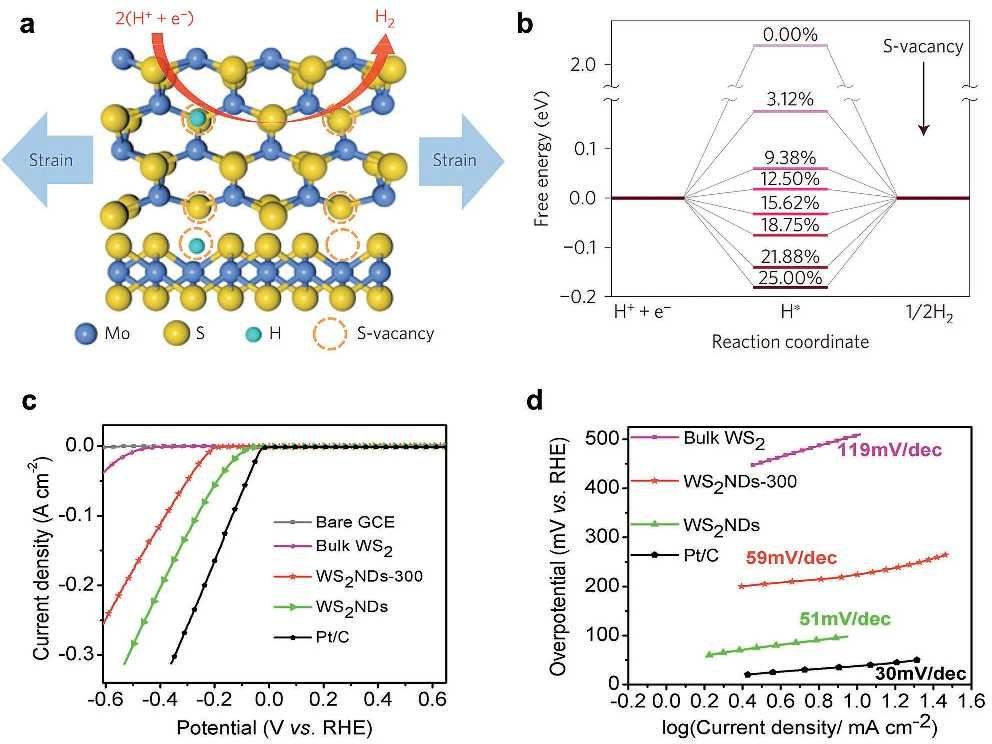 Lit 2 En 1 Joli Emerging 0d Transition Metal Dichalcogenides for Sensors Unique De