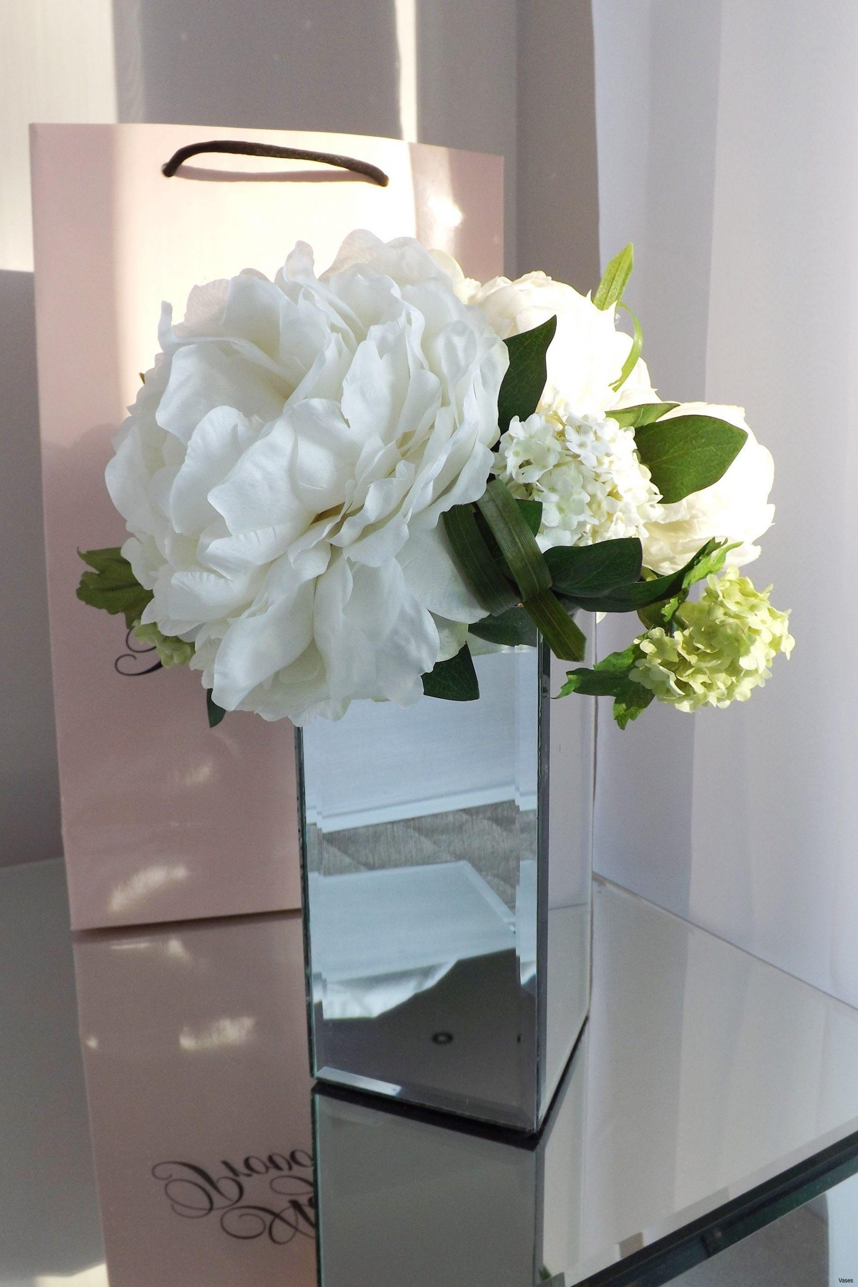 Lit 2 Metre Belle Vases Disposable Plastic Single Cheap Flower Rose Vasei 0d Design