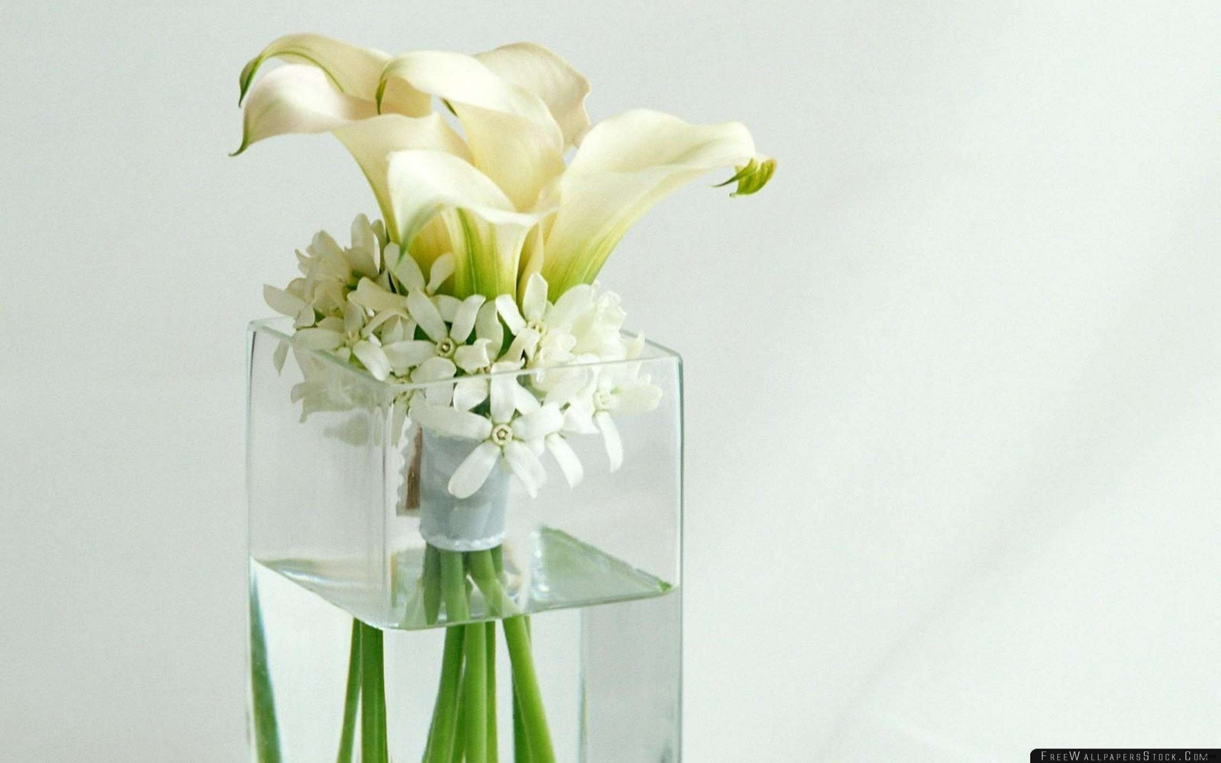 Lit 2 Metre Inspirant Vases Disposable Plastic Single Cheap Flower Rose Vasei 0d Design