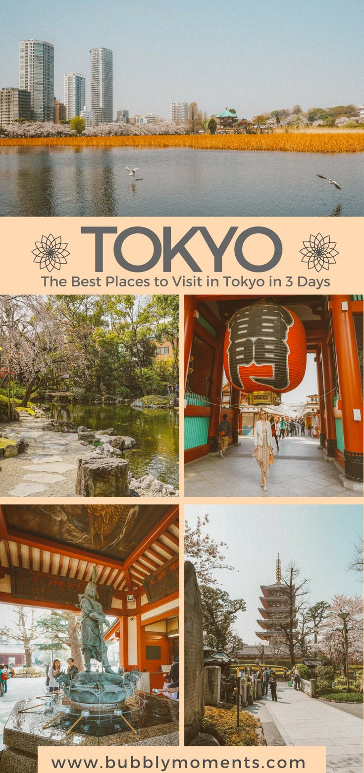 Lit 3 Places Bel the Best Places to Visit In tokyo In 3 Days