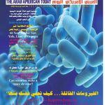 Lit Bébé Combiné Fraîche Calaméo Arab American News issue No 17