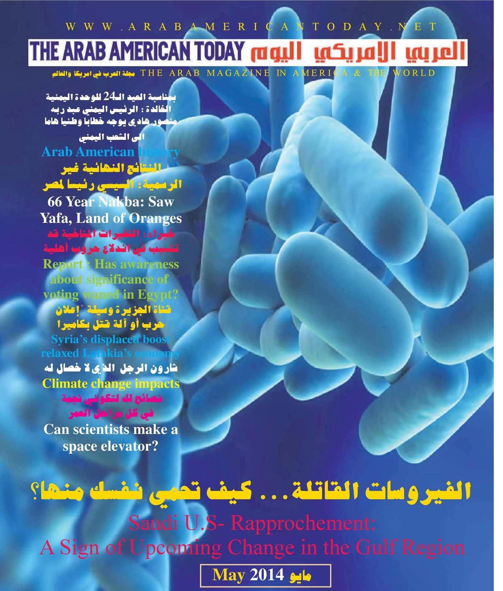 Lit Bébé Fly Beau Calaméo Arab American News issue No 17