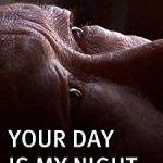 Lit Bébé Table à Langer Intégrée Fraîche Movies No Night Visions