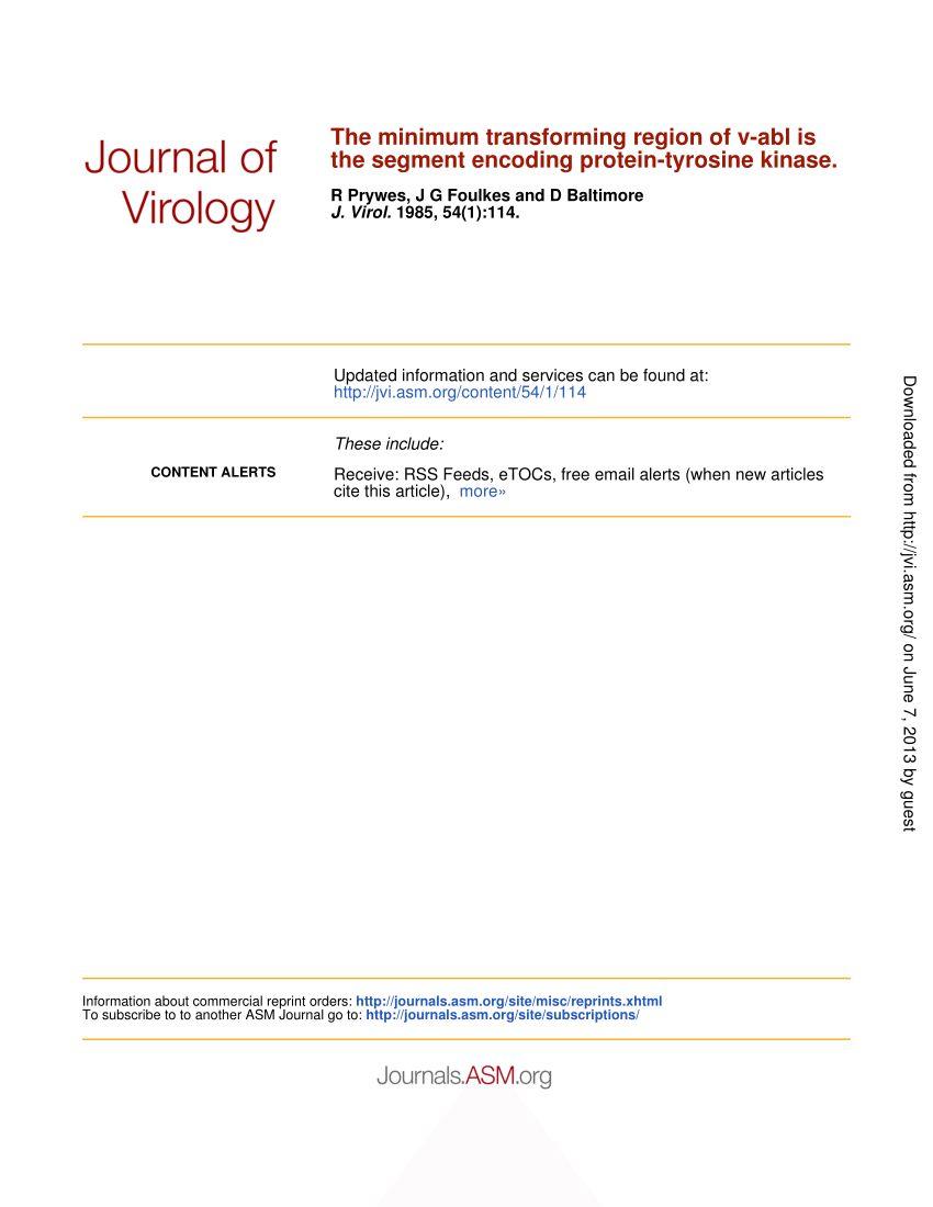 Lit Bébé Transformable Frais Pdf Transfection Of Fibroblasts by Cloned Abelson Murine Leukemia