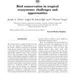 Lit Combiné Bébé Bel Pdf The Importance Of Suboscine Birds As Study Systems In Ecology