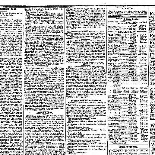 Lit Fer forgé 1 Place Luxe Chicago Daily Tribune [volume] Chicago Ill 1860 1864 July 14