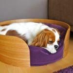 Lit Pour Chien Ikea Luxe Panier Osier Chien Ikea Génial Bien Choisir Le Panier Du Chien