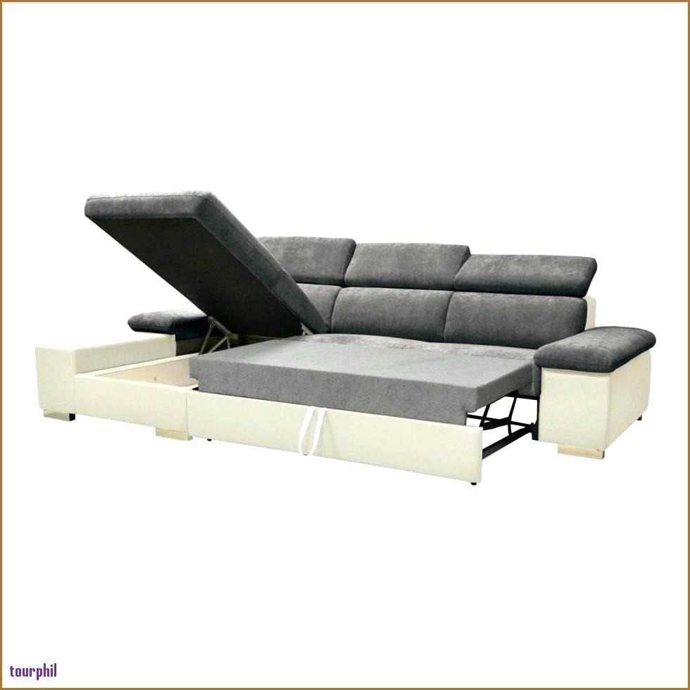 Lit Superposé Avec Toboggan Luxe Canapé Lit Design Scandinave Zochrim