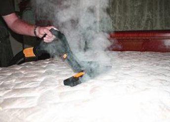 Nettoyeur Vapeur Punaise De Lit Charmant Fumigene Anti Puce De Lit Provence Nuisibles Amazon Vulcano