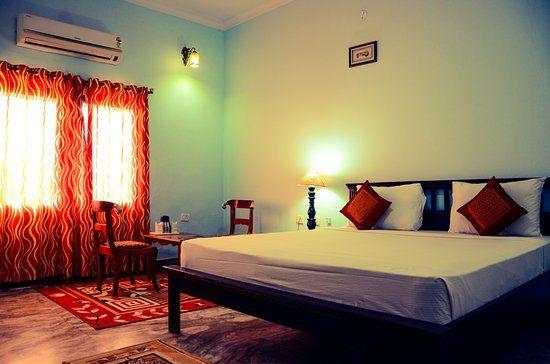 Nid De Punaise De Lit Magnifique Vraiment Decevant Avis De Voyageurs Sur Satyam Palace Resort