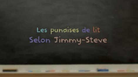 Ou Se Cache Les Punaises De Lit Charmant Les Punaises De Lit Selon Jimmy Steve