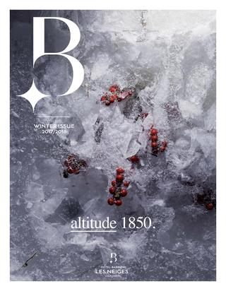 BARRIERE LES NEIGES N° 2 by alexandre benyamine issuu