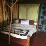 Parure De Lit Voyageur Magnifique Horrible Avis De Voyageurs Sur Hippo Camp Dar Es Salaam