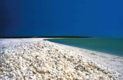 普纳鲁吾 puna lu 海滩位于夏威夷 其深黑色的沙子在火山喷出的炙热