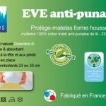 Prevention Punaise De Lit Huile Essentielle Le Luxe Traitement Punaise De Lit Pharmacie Punaises De Matelas Meilleurs
