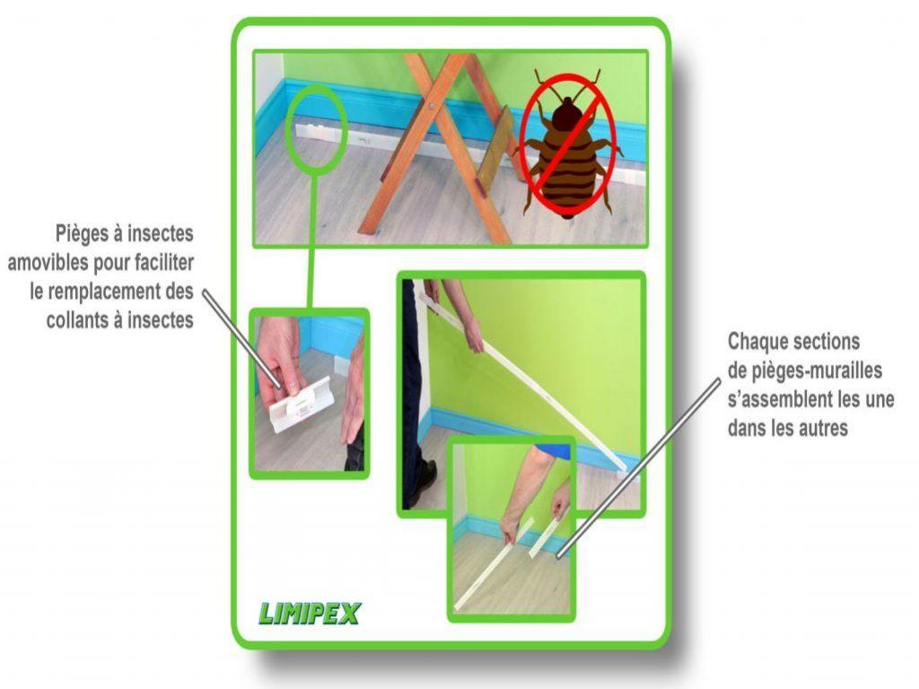 Produit Anti Punaise De Lit Pharmacie Inspirant Produit Anti Punaise De Lit Pharmacie Degy Fumig Ne Anti Puce Gr