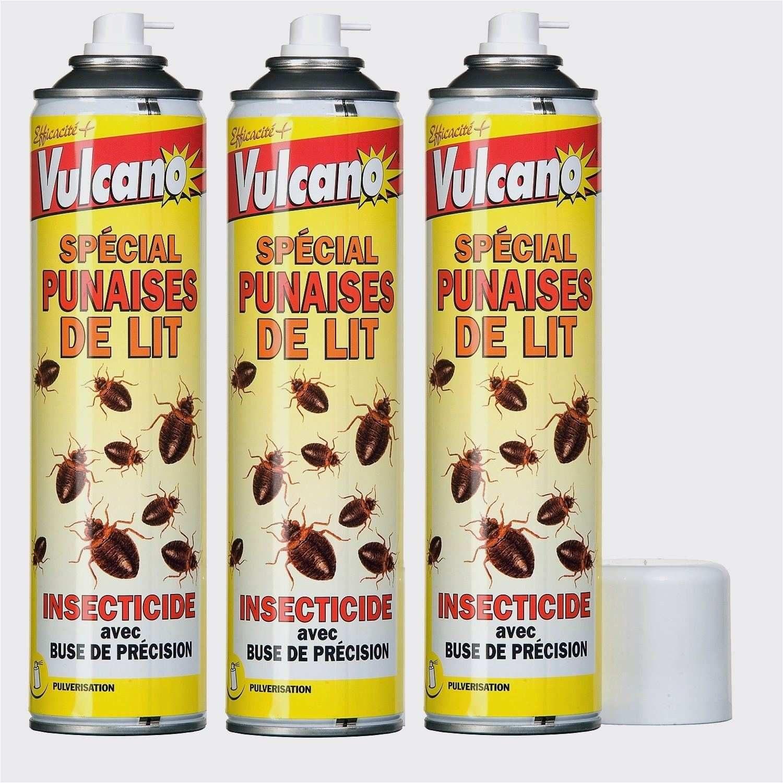 Produit Anti Punaise De Lit Leroy Merlin Splendid Insecticide